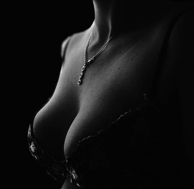 Free photo: Decollete, Bra, Section, Chain - Free Image on Pixabay - 574354 (74391)