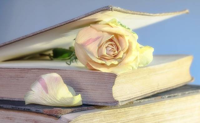 Free photo: Rose, Book, Old Book, Blossom - Free Image on Pixabay - 2101475 (74500)