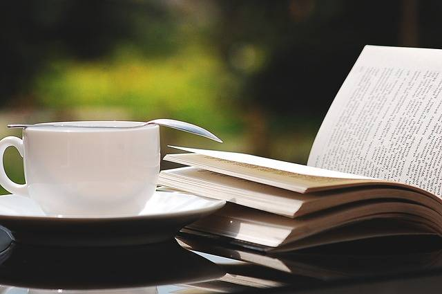 Free photo: Book, Teacup, Nature, Summer - Free Image on Pixabay - 2388213 (75030)