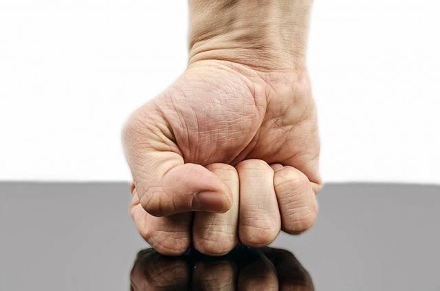 Free photo: Punch, Fist, Hand, Strength - Free Image on Pixabay - 316605 (77586)