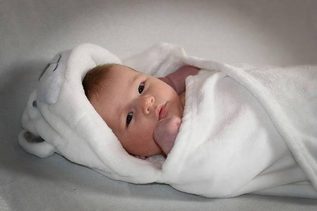 Free photo: Newborn, Child, Baby, Cute - Free Image on Pixabay - 1850445 (79485)