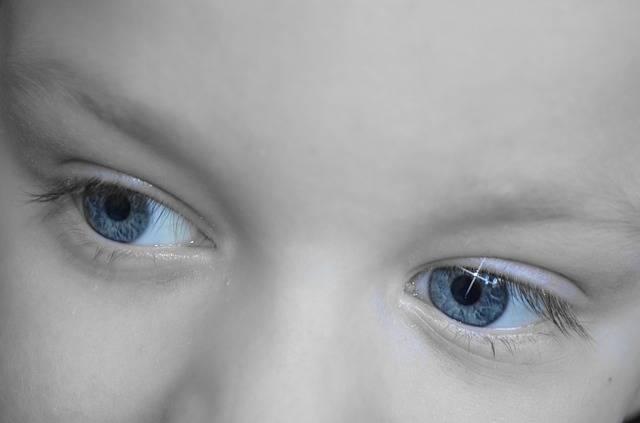 Free photo: Dreamy, Eyes, Look, Baby - Free Image on Pixabay - 20100 (79968)