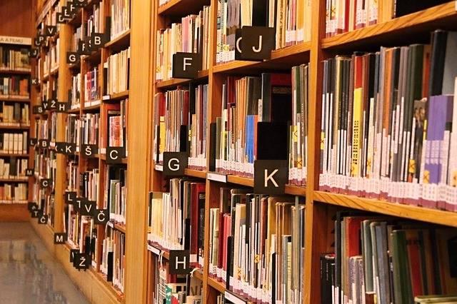Free photo: Books, Library, Alphabet, Reading - Free Image on Pixabay - 2253569 (80981)