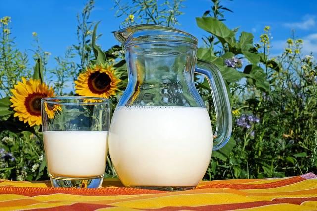 Free photo: Milk, Glass, Frisch, Healthy, Drink - Free Image on Pixabay - 2474993 (81048)