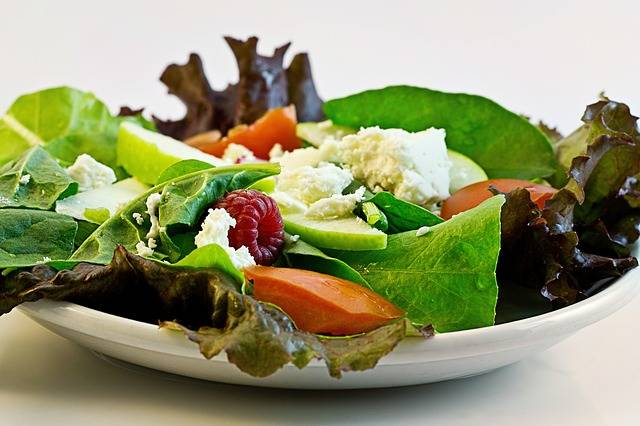 Free photo: Salad, Fresh, Food, Diet, Health - Free Image on Pixabay - 374173 (84971)