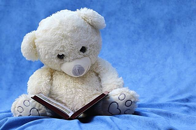 Free photo: Still Life, Teddy, White, Read - Free Image on Pixabay - 1037378 (85570)