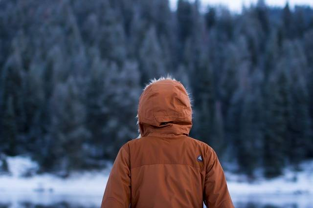 Free photo: Human, Wood, Cold, Winter, Jacket - Free Image on Pixabay - 690107 (85737)
