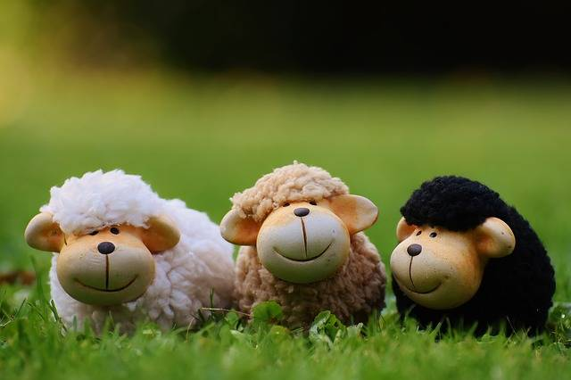 Free photo: Sheep, Meadow, Animals, Deco - Free Image on Pixabay - 1642874 (91852)