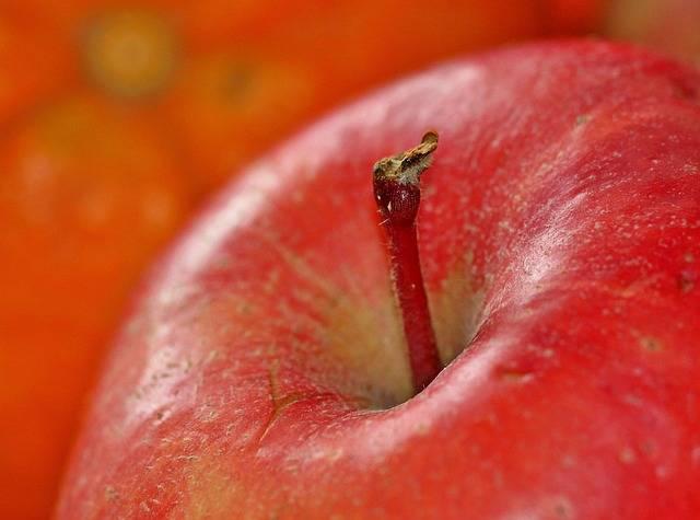 Free photo: Apple, Fruit, Fruits, Vitamins - Free Image on Pixabay - 1081105 (92887)