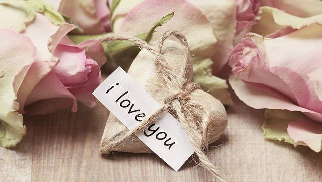 Free photo: Roses, Wooden Heart, Heart - Free Image on Pixabay - 2840743 (99503)