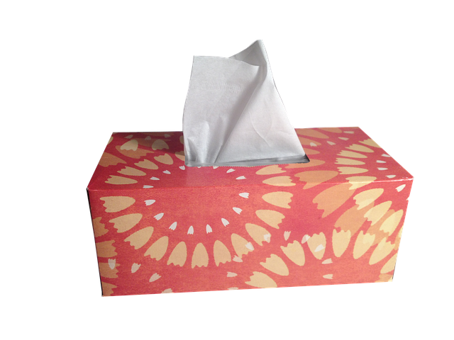 Free photo: Tissues, Box Of Tissues, Hygiene - Free Image on Pixabay - 1000849 (100258)