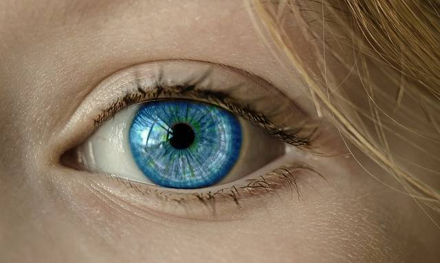 Free photo: Eye, Blue Eye, Iris, Pupil, Face - Free Image on Pixabay - 1173863 (103890)