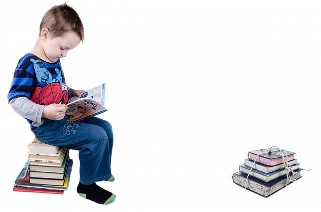 Free photo: Child, Book, Boy, Studying - Free Image on Pixabay - 315045 (105531)