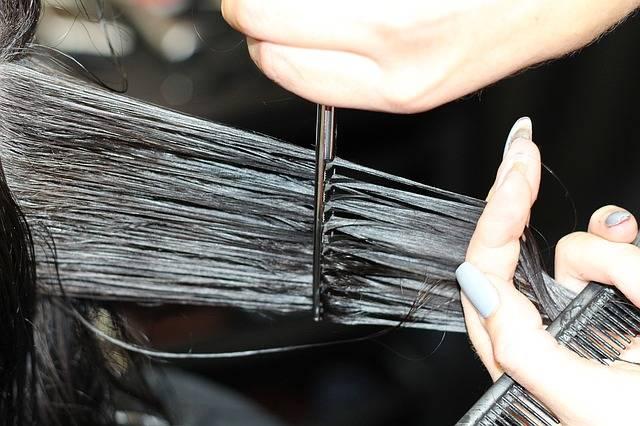 Free photo: Hairdressing, Cutting Hair, Haircut - Free Image on Pixabay - 1516352 (106185)