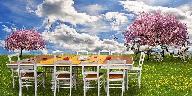 Free photo: Nature, Spring, Eat, Drink, Picnic - Free Image on Pixabay - 3185007 (113653)