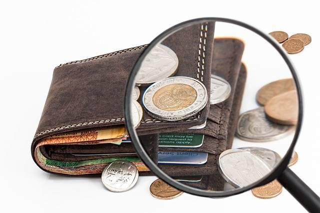 Free photo: Wallet, Credit Card, Cash - Free Image on Pixabay - 2292428 (113738)