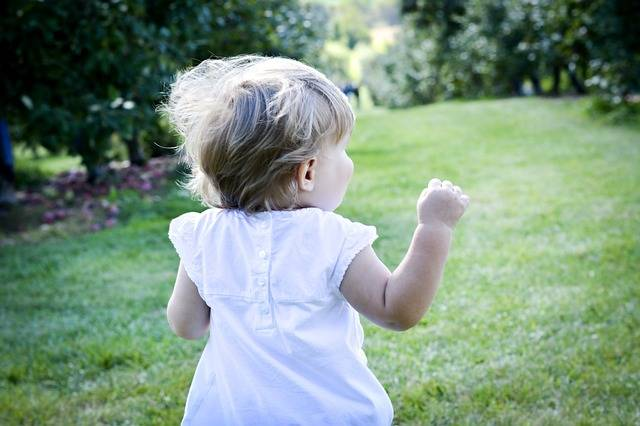 Nature Child Run Young · Free photo on Pixabay (114296)