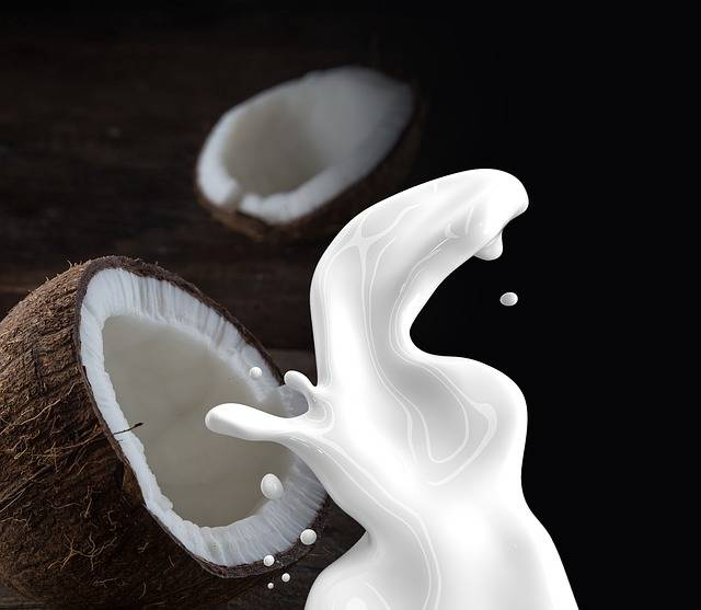 Coconut Milk Non · Free photo on Pixabay (123373)