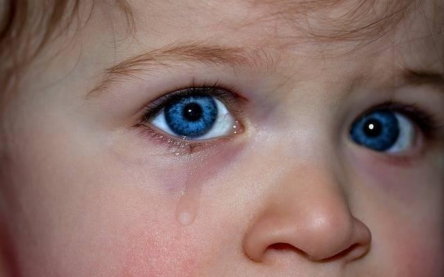 Children'S Eyes Blue Eye · Free photo on Pixabay (131678)
