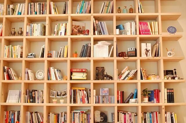 Book Bookcase · Free photo on Pixabay (136356)