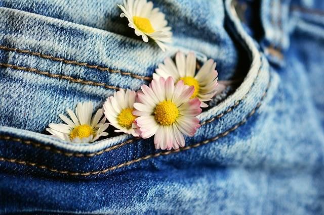 Pocket Daisy Jeans - Free photo on Pixabay (143554)