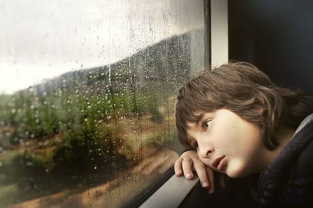 Person Little Boy - Free photo on Pixabay (152650)