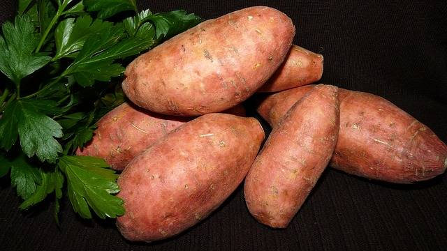 Vegetable Red Sweet Potato - Free photo on Pixabay (154741)