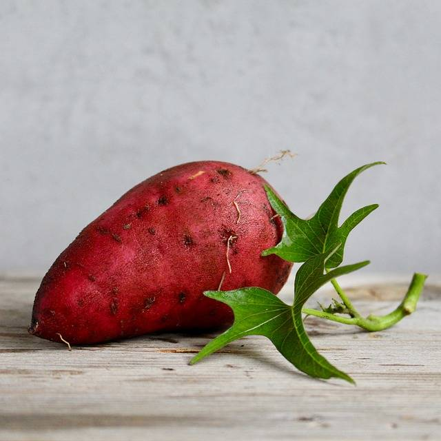 Sweet Potato Food Vegetable - Free photo on Pixabay (154743)