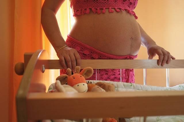 Woman Family Speaker Pregnant - Free photo on Pixabay (156490)