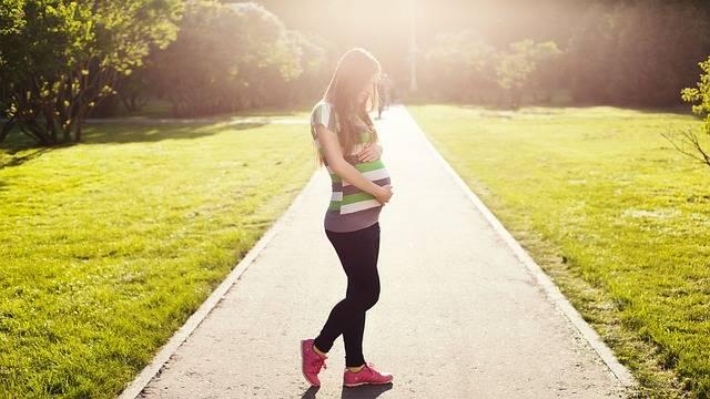 Pregnant Girl Woman - Free photo on Pixabay (156495)