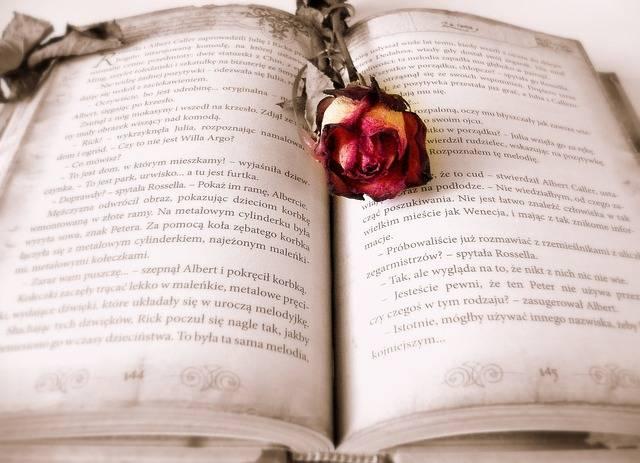 Book Reading Love Story - Free photo on Pixabay (158887)