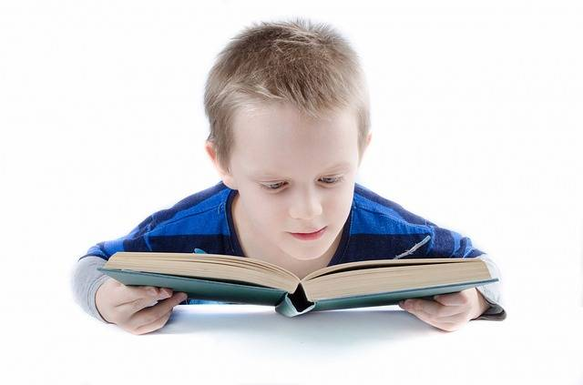 Read Book Boy - Free photo on Pixabay (164017)