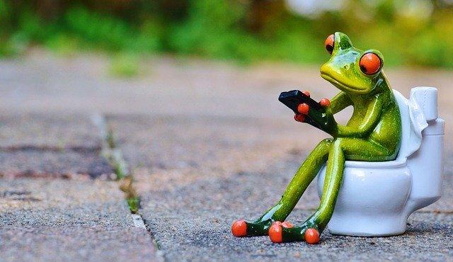 Frog Mobile Phone Toilet - Free photo on Pixabay (170232)