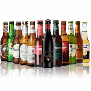 世界のビール12本飲み比べギフトセット スペイン産高級ビール入! (141490)
