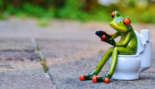 Frog Mobile Phone Toilet - Free photo on Pixabay (4634)