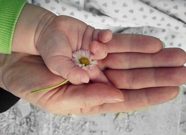 Hands Love Hand - Free photo on Pixabay (5471)