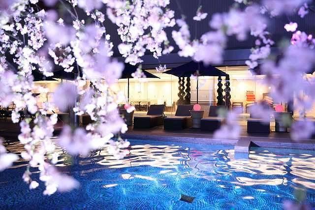 夜景と桜を満喫♡今年は「SAKURAナイトプール」でお花見がおすすめ♪