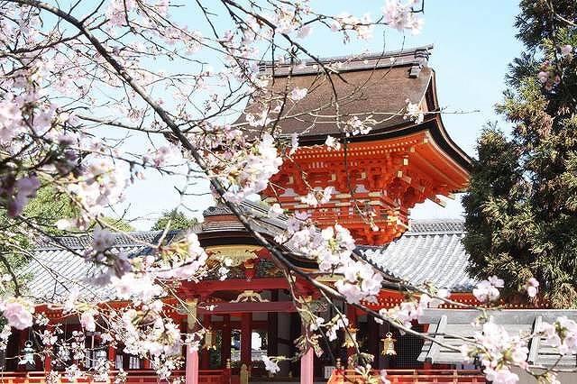 歴史だけじゃない!今が旬「もうひとつの京都」の魅力を楽しもう