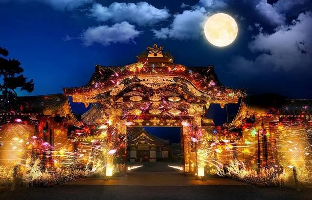 二条城がアート空間に!京都で秋の「FLOWERS BY NAKED」が開催