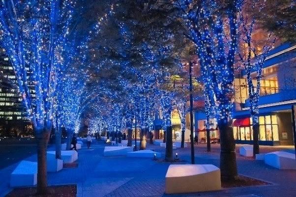 横浜のみなとみらいエリアが光に包まれる!市内最大級のイルミネーション