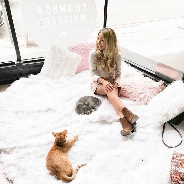 LAの猫カフェが衝撃のおしゃれさ!ファーのインテリアで猫ともふもふ♡