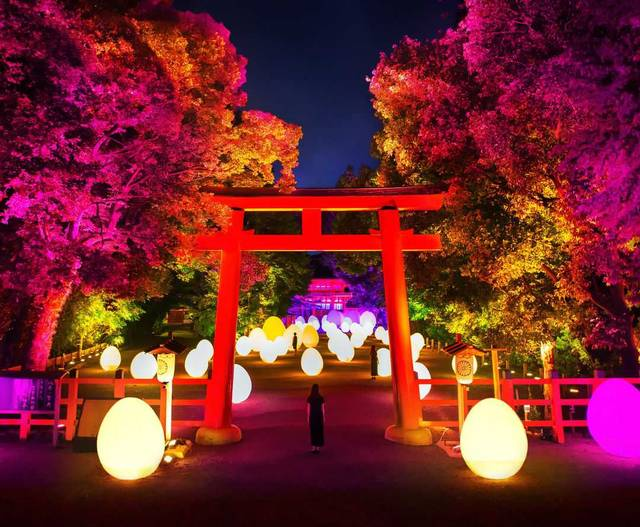 チームラボ × 京都の下賀茂神社!光のアートが今年も開催!