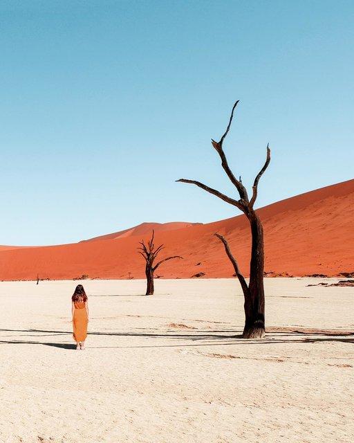 ナミビアに発見。世界最古の砂漠にある「死の沼地」って?