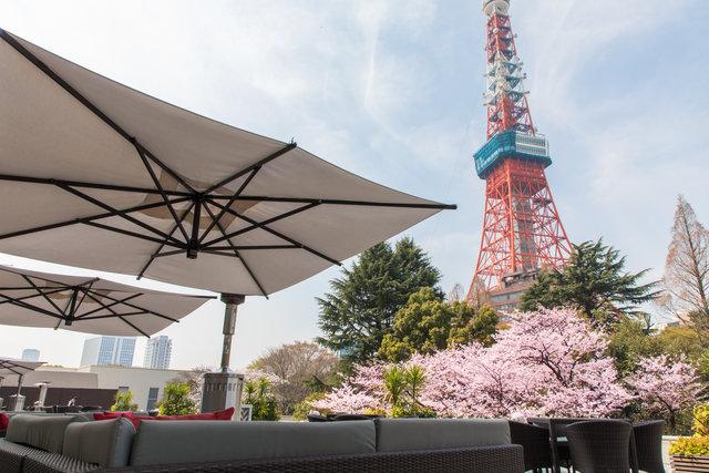 東京プリンスホテルが東京タワーと満開の桜を楽しむ「桜まつり 2020」開催!