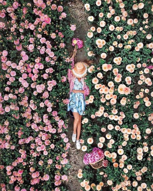 世界中から、夢見心地の花空間をピックアップ!