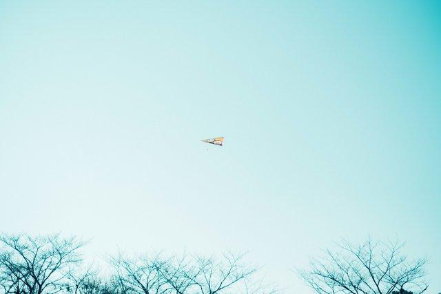 【ぽんずのみちくさ Vol.2】今夜、世界の裏側へ