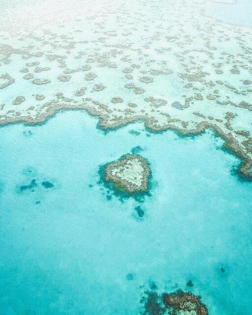 オーストラリアにある世界最大のサンゴ礁群「グレート バリア リーフ」