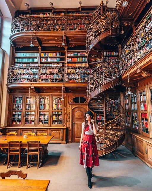 世界の美しい図書館<装飾美編>