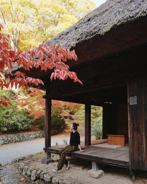 わざわざ訪れたい熊本の秘境「五家荘」。自然・食・歴史を一度に堪能できる贅沢スポット!