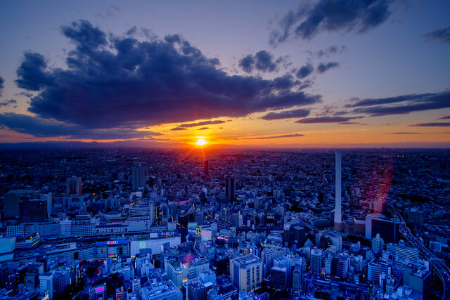 冬だけの絶景!サンシャイン60展望台で臨場感溢れる東京パノラマ体験